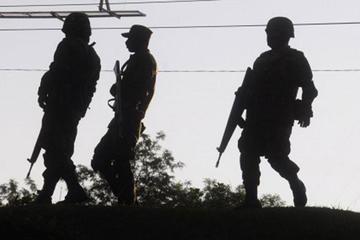 Procesan a tres soldados por decapitar a dos gatos en Pando