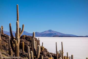 Se restringe el ingreso de turistas a Isla Incahuasi