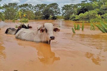 Declaran alerta por el desborde de ríos en ocho departamentos