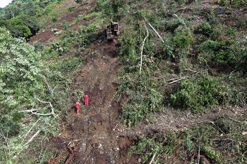 Hallan otro cuerpo sin vida en el derrumbe en la ruta a Caranavi