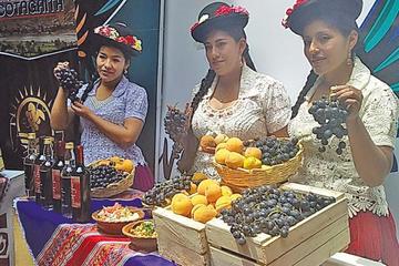 Cotagaita invita al país a su Carnaval