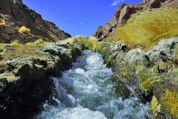 Equipo jurídico de Bolivia prevé trabajar en la dúplica por el Silala