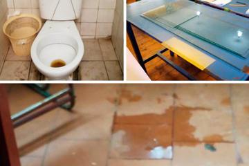 Identifican varias escuelas con daños en las cubiertas y baños