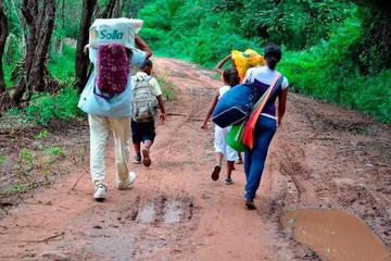 ONU alerta de migración de 378 campesinos de regiones de Colombia