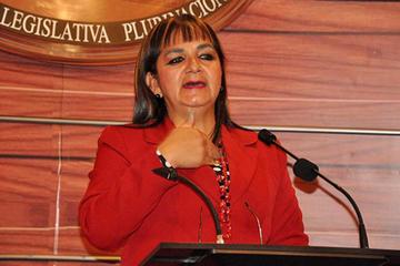 Piden a Bolsonaro que interceda ante la CIDH para frenar repostulación