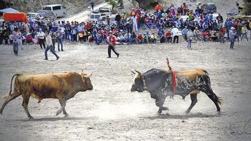Lanzan Fiesta de Pascua Toro Tinku