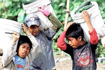 Hay 393 mil niños y adolescentes en situación laboral y de trabajo