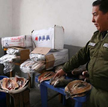 La Intendencia incauta más de 200  unidades de pescado en mercados