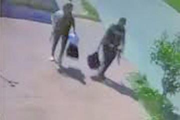 Video muestra el supuesto volteo de droga denunciado por Medina;