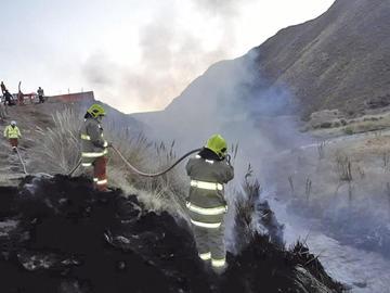 Bomberos sofocan incendio de matorrales en la ciudad