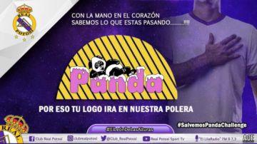 Real Potosí llevará el logo de Helados Panda para apoyar a la empresa