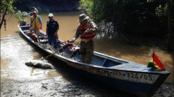La Armada decomisa 49 caimanes y lagartos en el río Yacuma