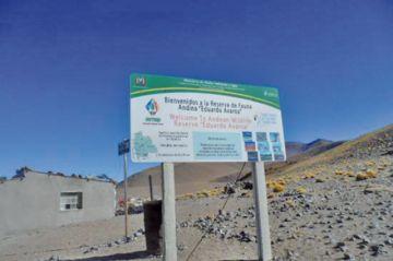 Encapuchados armados roban casi medio millón de Bolivianos en la REA