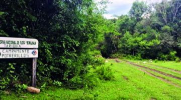 Comunarios de Tariquía inician marcha hacia Tarija en defensa de la reserva