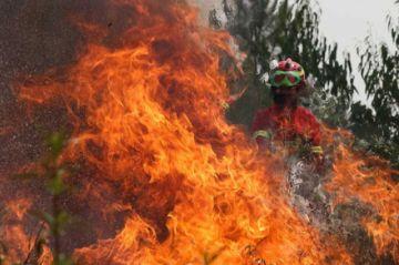 """Piden ayuda del exterior por incendio y Evo dice que """"no es necesaria"""""""