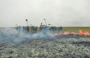 Deportistas se solidarizan con los pobladores de la Chiquitanía