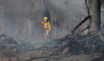 Gobierno reporta 1.817 familias afectadas por incendio forestal