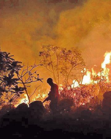 Macron llama al mundo a actuar contra el fuego en la Amazonía