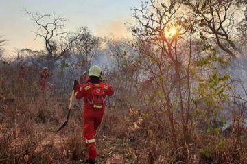 Rebrotan incendios en Charagua y aún hay fuego en 14 municipios