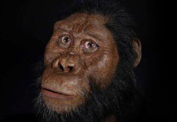 Hallan cráneo de antiguo Homo Sapiens