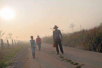 Brasil prohíbe la quema para preparar siembras