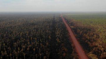 Son 13 territorios protegidos que fueron afectados por incendios