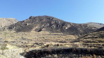 Confirman que incendio en El Molino fue controlado
