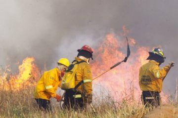 El 71 % de territorios afectados por el fuego son áreas protegidas