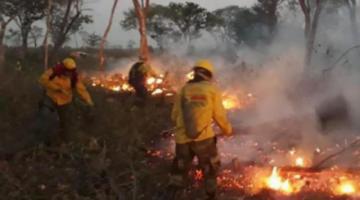 Bomberos voluntarios denuncian que apagan incendios y los colonos los vuelven a encender