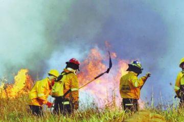 FAN: incendios ya consumieron 4.1 millones de hectáreas en Bolivia