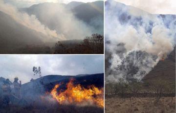 Incendios forestales afectan al Madidi y a la serranía de Sama