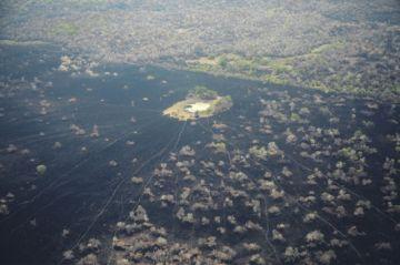 El 43 % del daño por el fuego se registra en las áreas protegidas