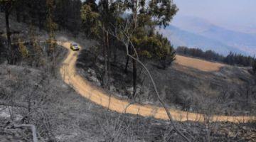 Controlan el incendio en el Parque Tunari