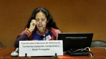 Indígenas denuncian a Evo ante la ONU por los incendios forestales