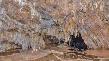 Ya se autorizó más de un centenar de viajes de estudio en Potosí
