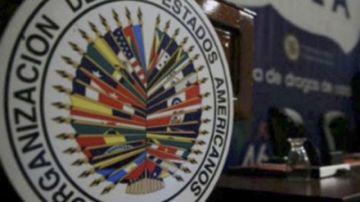 La OEA debate sobre las elecciones de Bolivia