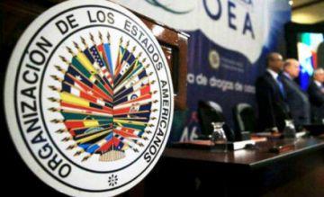 Gobierno informa sobre elecciones en la OEA