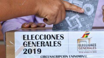 OEA: los resultados de la auditoría electoral se sabrán en 10 a 12 días