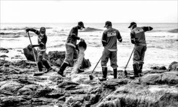 Brasil enfrenta desastre ambiental que amenaza refugio de ballenas