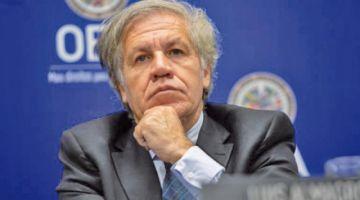 Almagro ofrece a presidenta Añez el apoyo de la OEA
