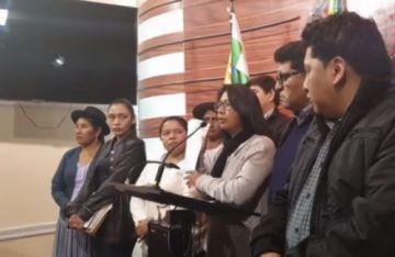 MAS convoca a senadores para trabajar proyecto de ley para elecciones