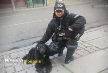 Muere el can policía de la UTOP y compañero del fallecido comandante Antelo