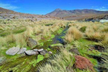 Cívicos piden atención prioritaria a la demanda por agua del Silala