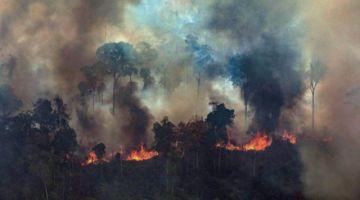 DiCaprio rebate a Bolsonaro y  niega que financie incendios
