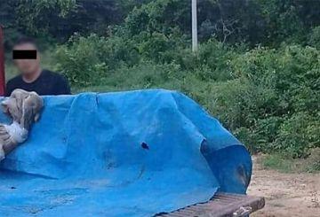 Hallan dos cuerpos calcinados y mutilados en una carretera de Trinidad