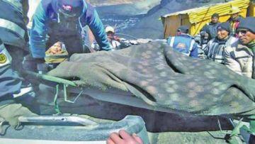 Minero muere sepultado por carga en una mina