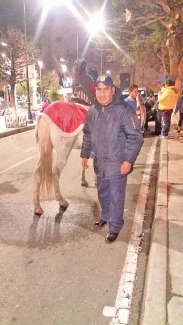 No se aclara legalidad del uso de caballos en la plaza