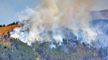 Los incendios en el Tunari provocaron la segunda pérdida