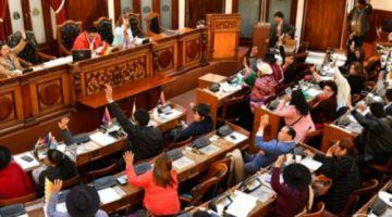 El MAS en la Cámara de Diputados sancionó ley de Derechos Humanos