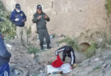 Una madre mata a sus  dos hijos a cuchilladas